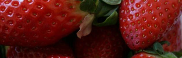 Fresas con chocolate no…que me enamoro
