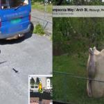 Las imágenes más locas de Google Street View.