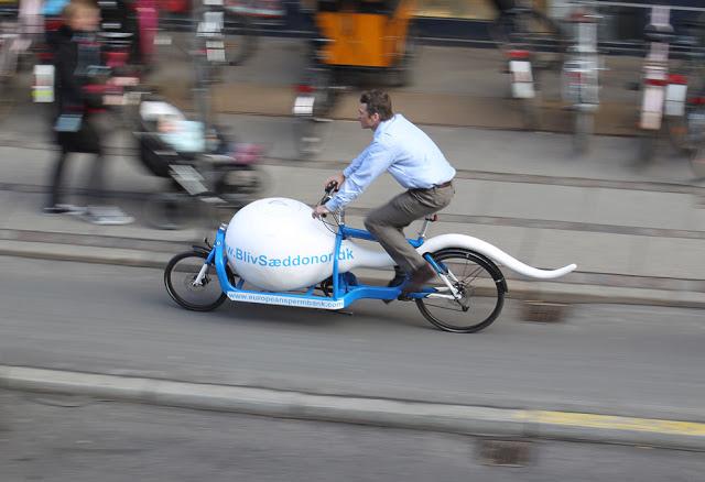 Bicicleta espermatozoide