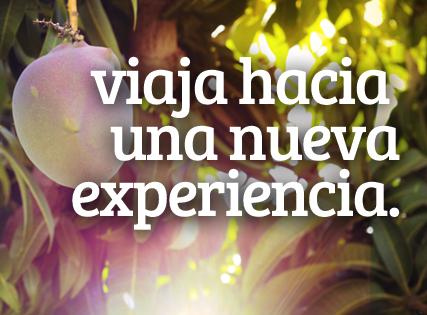¿Quieres vivir una nueva experiencia?
