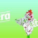 Concurso llaollao primavera – Planta tu flor y dale un toque llaollao